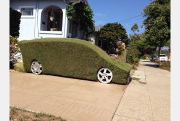 Literally Green car sculpted out of a bush