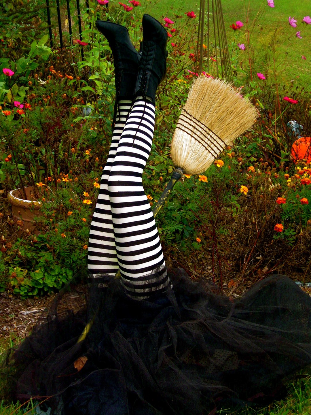 """Daily Press - Witch Involved in Fatal Broom Accident. """"Spirits"""" May Have Been Contributing Factor"""