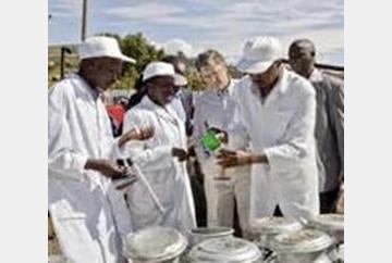 Milking Nigeria